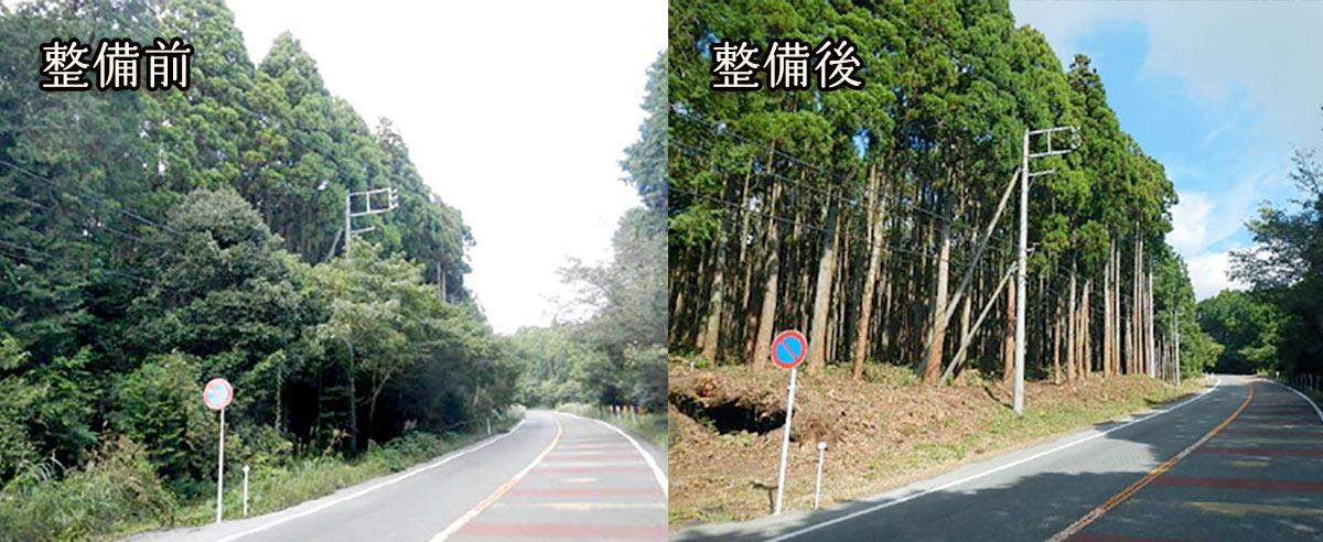 富士山世界文化遺産森林景観整備事業